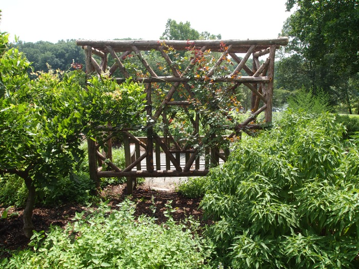 Bold Garden