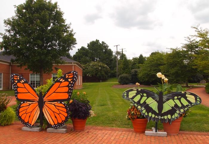 Outside Butterflies Live!