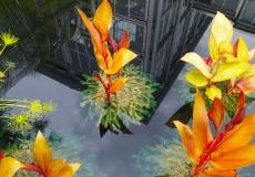 Lewis Ginter's water gardens