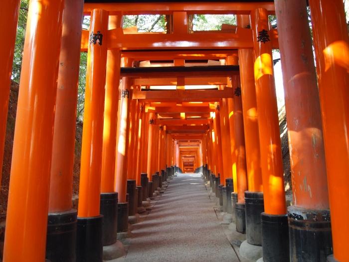 Infinite torii gates in Kyoto