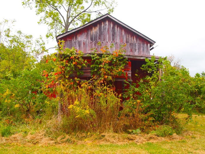 abandoned barn?