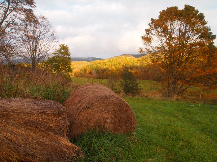hay bales and a blanket of sunlight