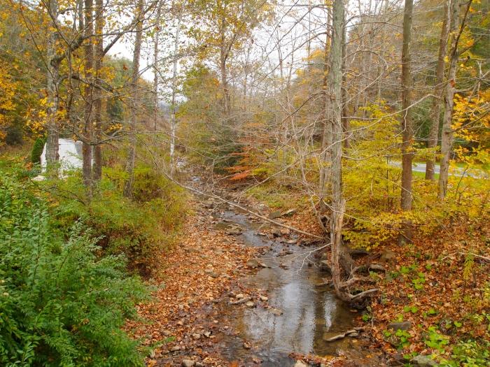 a creek by the church