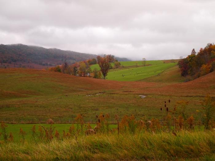 farmland in Highland County