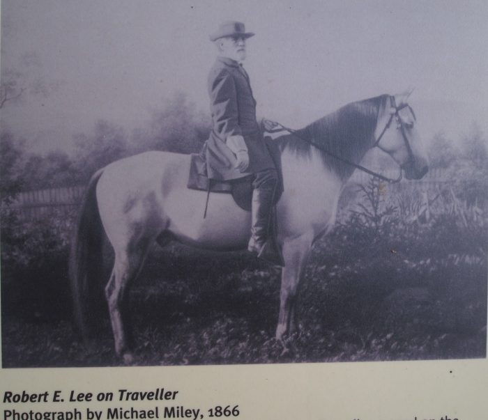 Robert E. Lee and Traveller