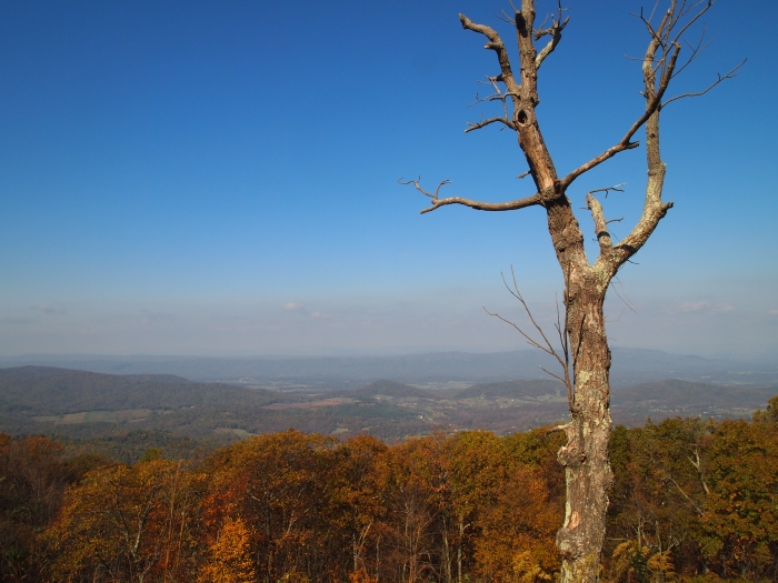 horizon viewed from Skyline Drive