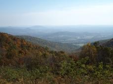 Piedmont View