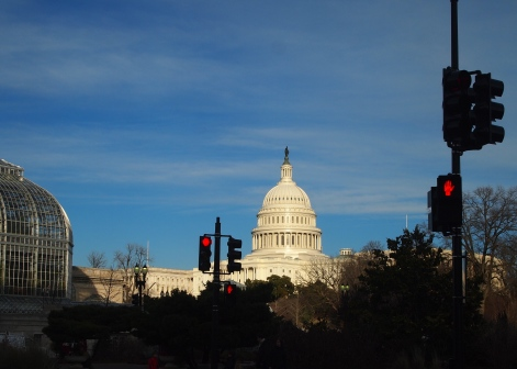 the U.S. Capitol from Bartholdi Park