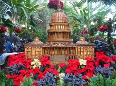 U.S. Capitol at the U.S. Botanic Garden
