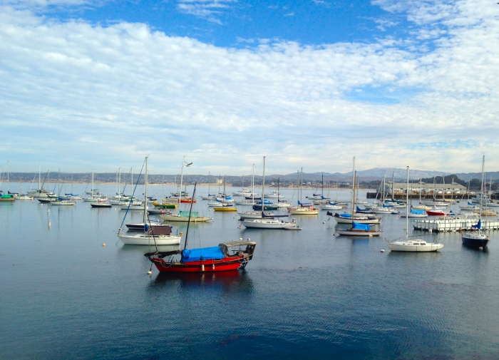 Fishing boats in Monterey Bay