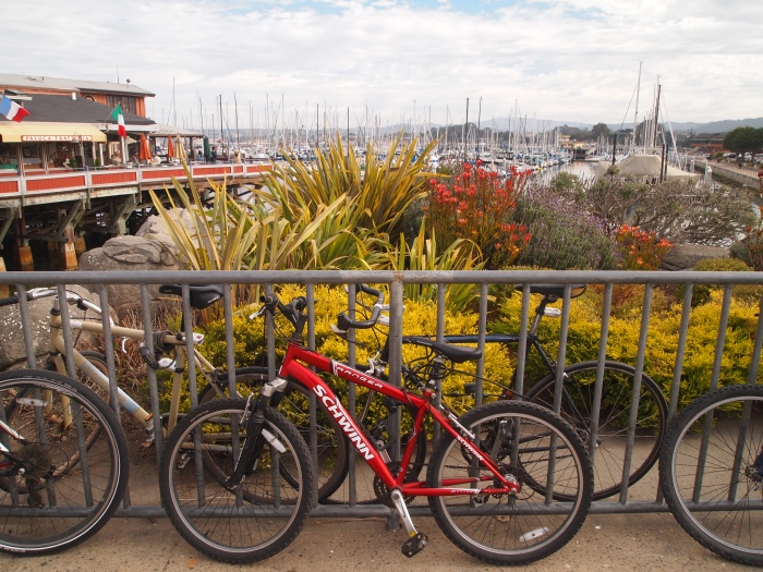 Bicycles along the bay