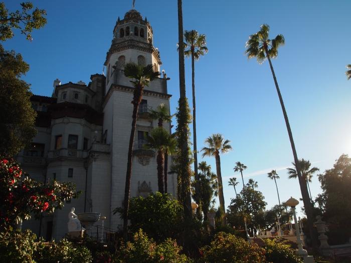 palm trees at Casa Grande