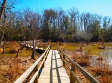 Bay View Trail through wetlands