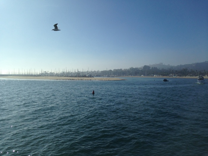 view from Stearns Wharf