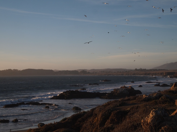California coast at San Simeon