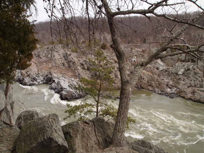 Downriver from Great Falls in Mather Gorge