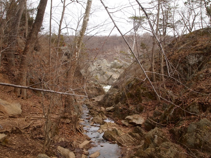 stream feeding into the Potomac