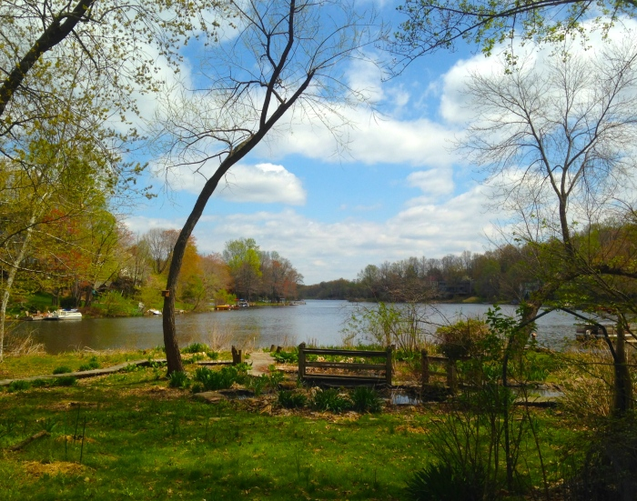 A view over Lake Audubon in Reston