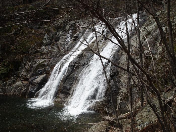 Upper White Oak Falls