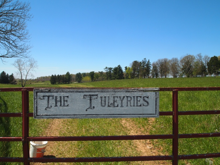 The Tuleyries