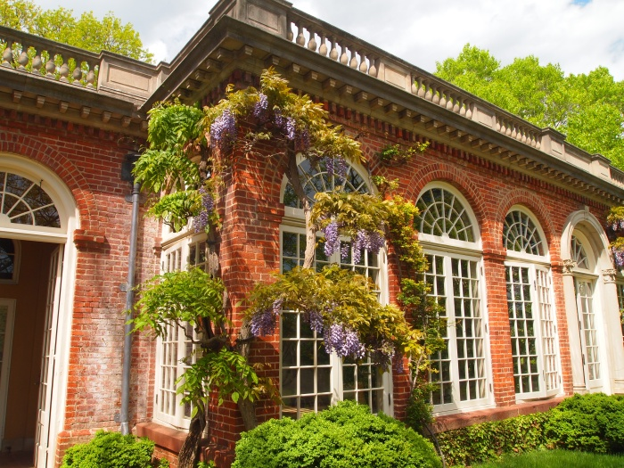 wisteria-draped Orangery