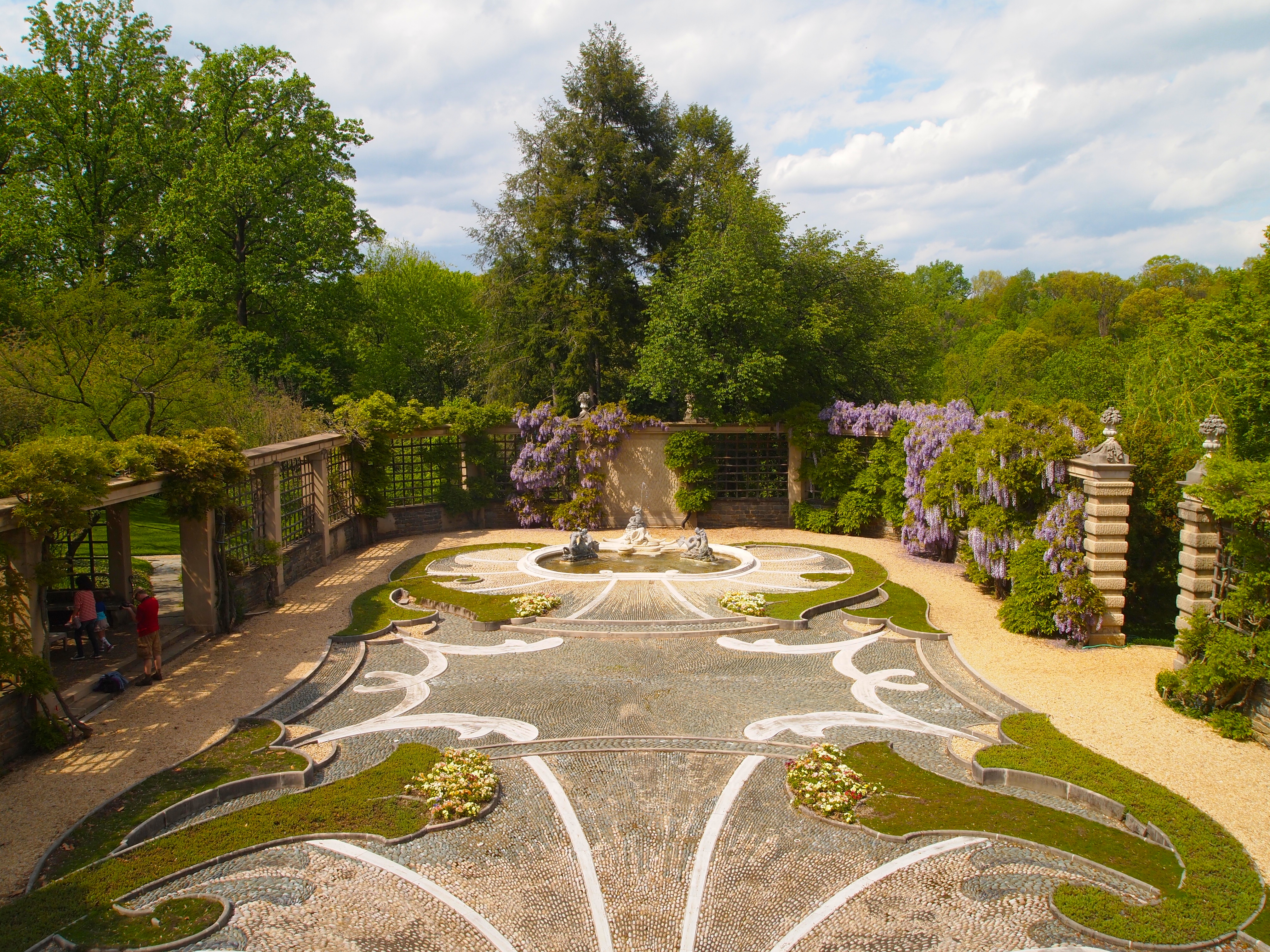 of wisteria & tulips at dumbarton oaks gardens – nomad, interrupted