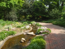 walkway and stream near the Tea House