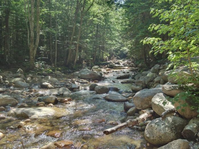 Along the path to Sabbaday Falls