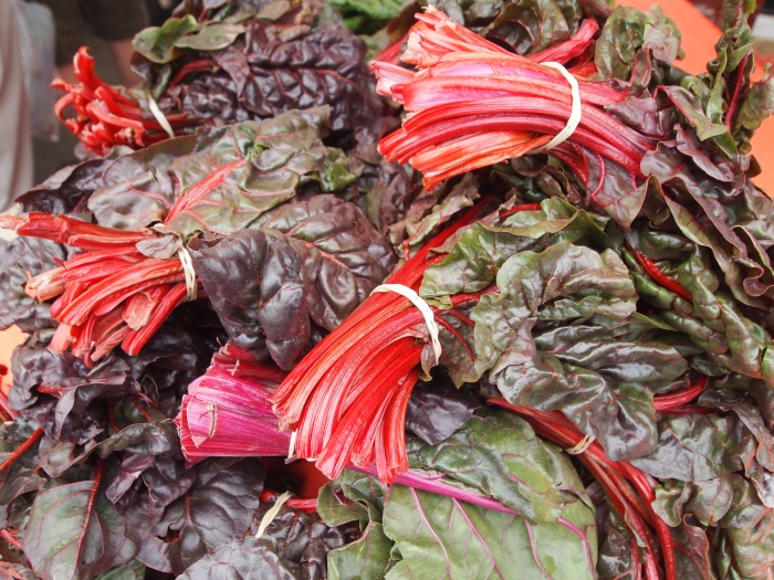 rhubarb or red kale - who can tell me?