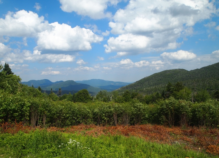 Looking out over the White Mountains from the Kancamagus Highway