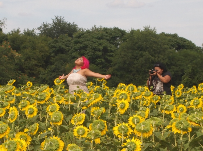 People posing with the sunflowers