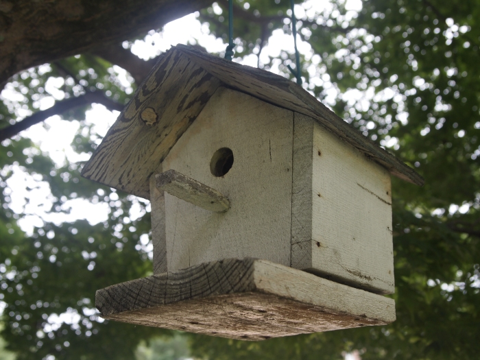 One of many bird houses in Shirley's yard
