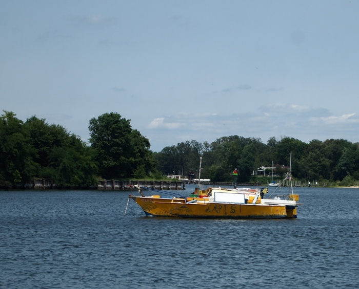 a yellow catamaran