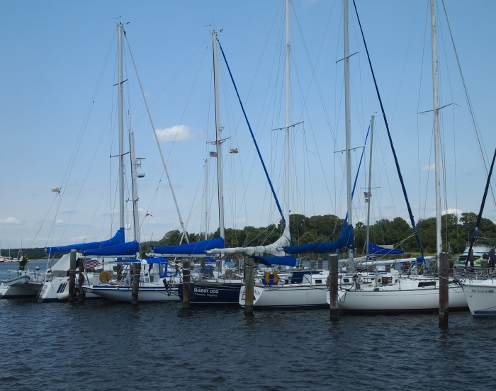 pretty sailboats all in a row