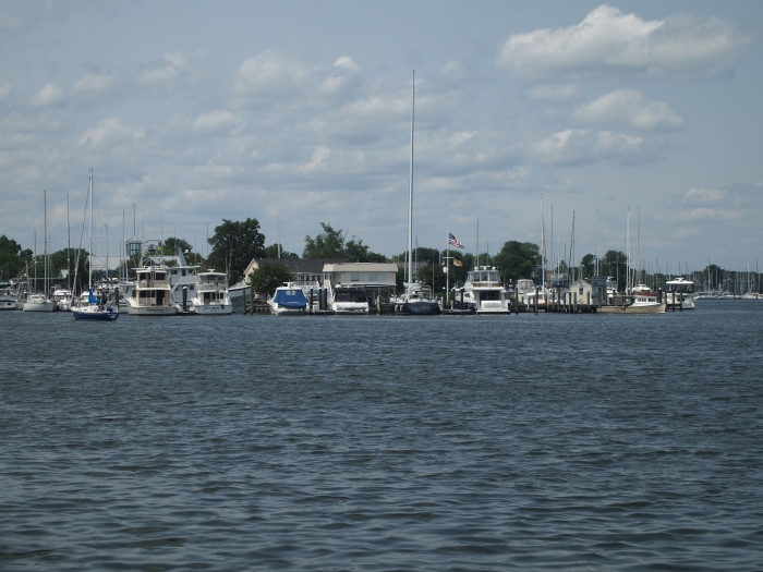 Across Back Creek: Solomon's Yachting Center & Calvert Marina