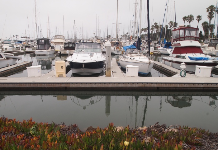 At the Oxnard marina