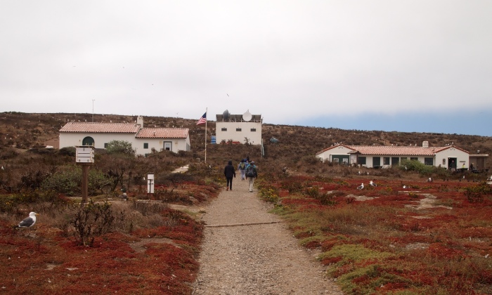 the pathway to the museum