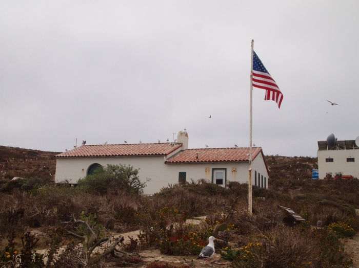 Ranger buildings on Anacapa Island