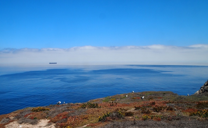 the Pacific Ocean from Anacapa Island