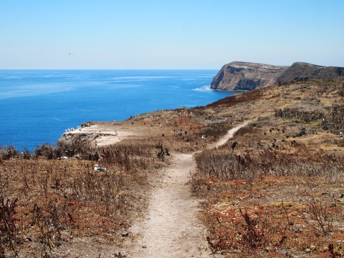 Path along the island cliffs