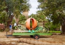 a Cinderella pumpkin carriage !!