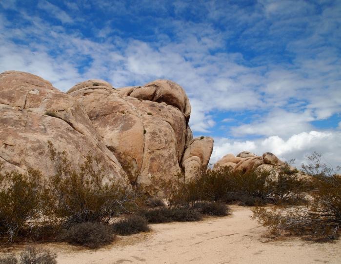 Jumbo Rocks at Joshua Tree