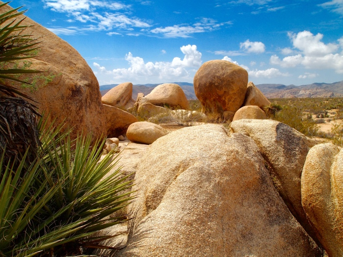 Jumbo Rocks and horizons