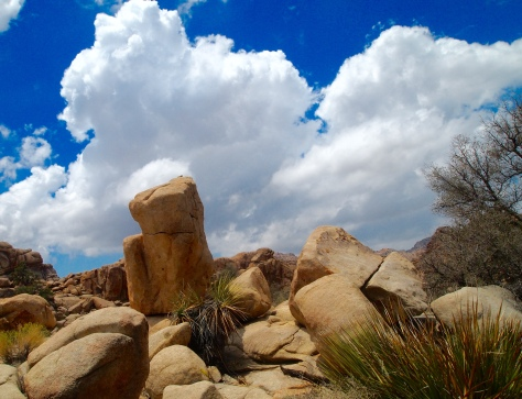 Strange boulders in Hidden Valley