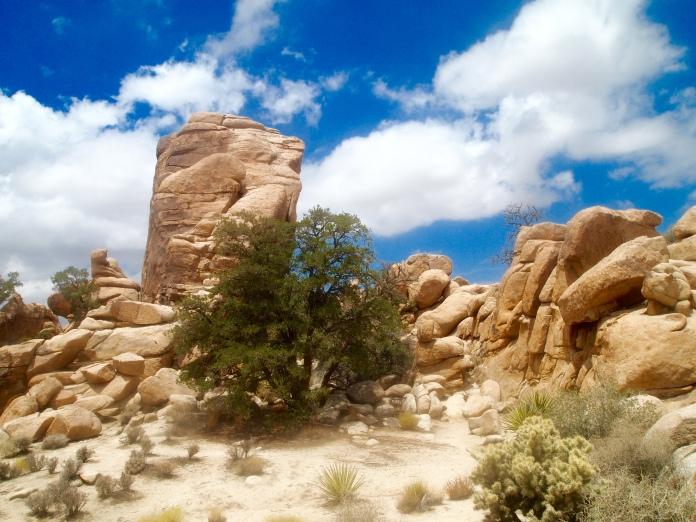 Monolith in Hidden Valley