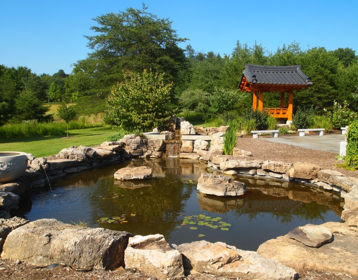 pond in the Korean garden