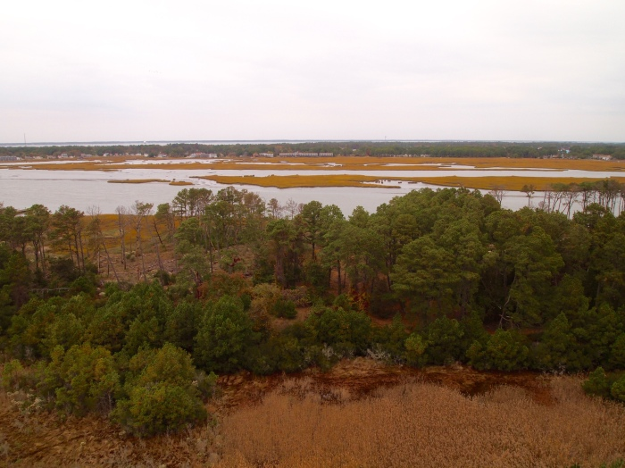 View of Chincoteague Bay from Assateague Lighthouse