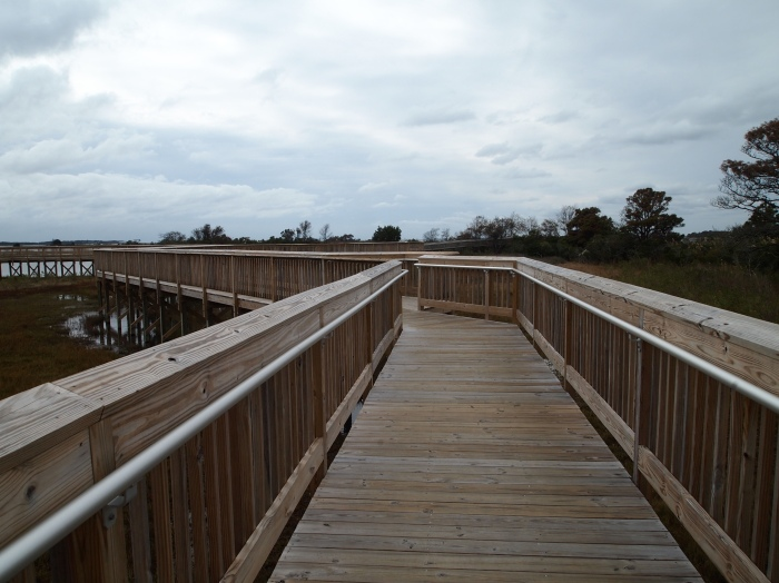 Marsh walk on Assateague Island