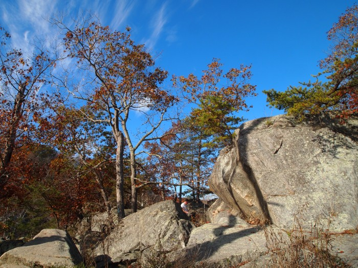 boulders and trees