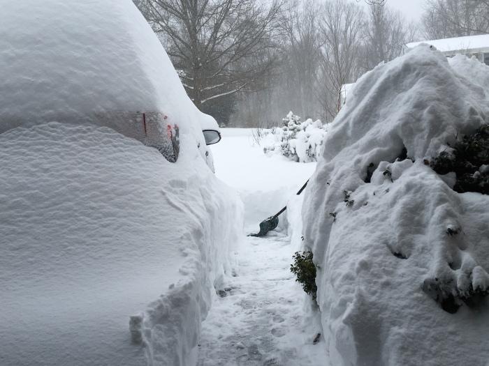 the path I shoveled Saturday